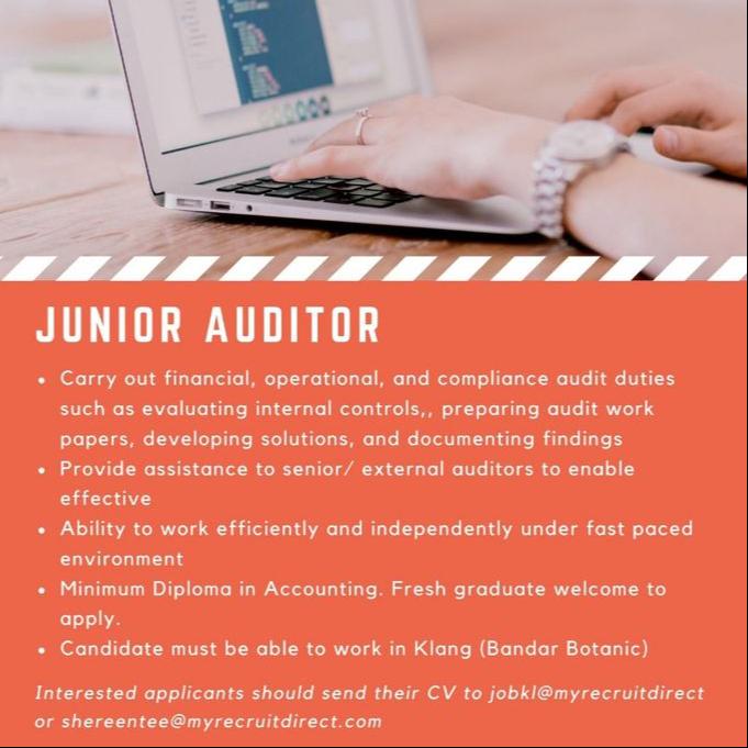 Junior Auditor